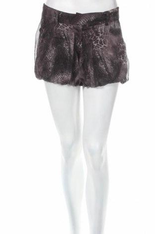 Дамски къс панталон Miso