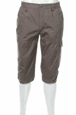 Мъжки панталон Swedemount