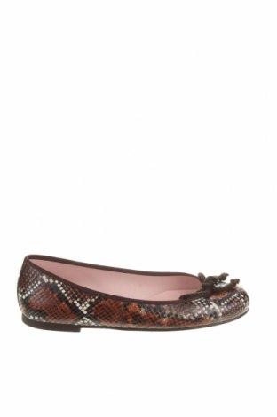 Дамски обувки Pretty Ballerinas, Размер 37, Цвят Кафяв, Естествена кожа, Цена 67,20лв.