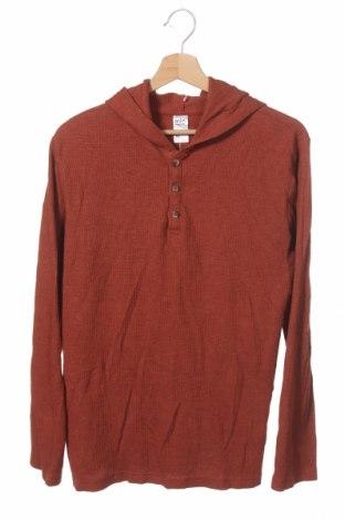 Παιδική μπλούζα Anko, Μέγεθος 15-18y/ 170-176 εκ., Χρώμα Πορτοκαλί, 60% βαμβάκι, 40% πολυεστέρας, Τιμή 8,31€