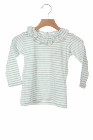 Детска блуза Little Celebs, Размер 18-24m/ 86-98 см, Цвят Син, 55% памук, 41% полиестер, 4% еластан, Цена 11,76лв.