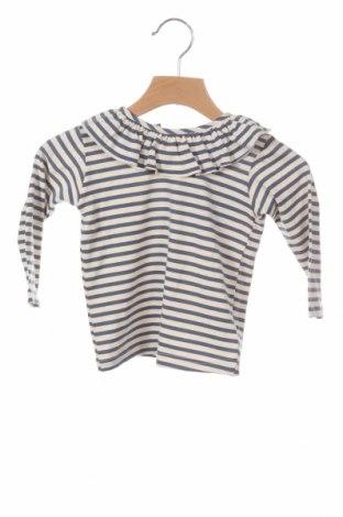 Детска блуза Little Celebs, Размер 9-12m/ 74-80 см, Цвят Син, Памук, Цена 9,31лв.