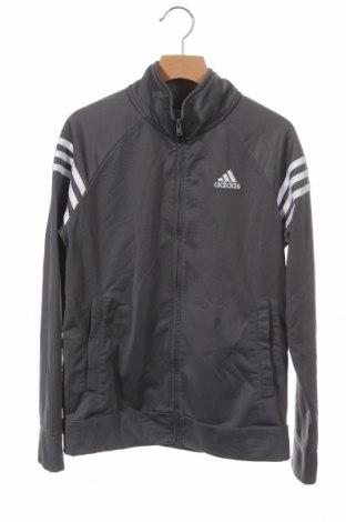 Παιδικό αθλητικό πάνω φόρμα Adidas, Μέγεθος 10-11y/ 146-152 εκ., Χρώμα Γκρί, Πολυεστέρας, Τιμή 14,55€