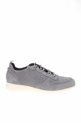 Ανδρικά παπούτσια Hackett, Μέγεθος 41, Χρώμα Γκρί, Φυσικό σουέτ, Τιμή 52,14€
