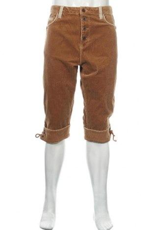 Pánské manšestráky  S.Oliver, Velikost XL, Barva Hnědá, 99% bavlna, 1% elastan, Cena  459,00Kč