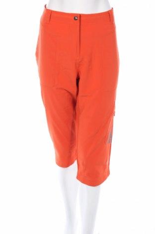 Дамски спортен панталон Epister