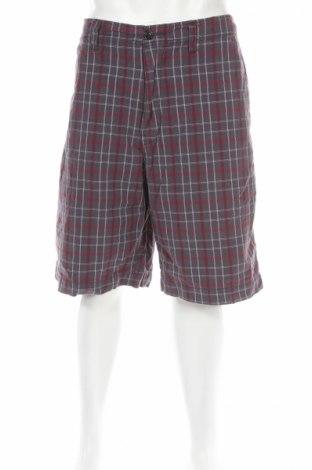 Мъжки къс панталон American Eagle, Размер XL, Цвят Многоцветен, Памук, Цена 7,20лв.