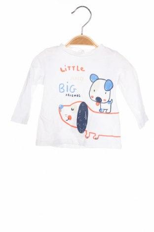 Детска блуза Fagottino By Oviesse, Размер 3-6m/ 62-68 см, Цвят Бял, Памук, Цена 15,36лв.