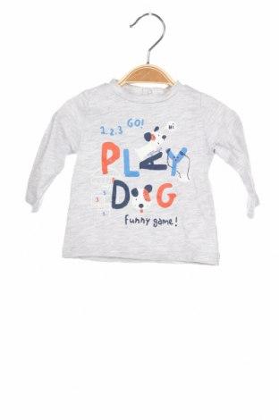 Детска блуза Fagottino By Oviesse, Размер 3-6m/ 62-68 см, Цвят Сив, 98% памук, 2% вискоза, Цена 22,40лв.