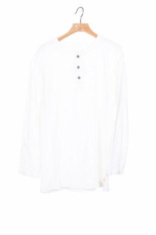 Детска блуза Zara Kids, Размер 11-12y/ 152-158 см, Цвят Бял, Цена 8,14лв.