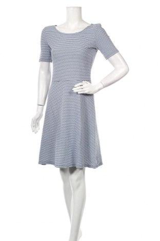Φόρεμα Esprit, Μέγεθος S, Χρώμα Μπλέ, 92% βαμβάκι, 7% πολυεστέρας, 1% ελαστάνη, Τιμή 25,98€