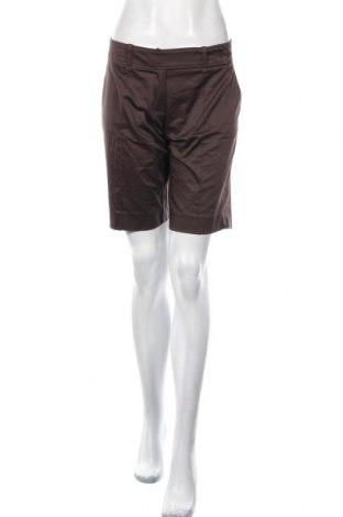 Pantaloni scurți de femei Orsay, Mărime M, Culoare Maro, 97% bumbac, 3% elastan, Preț 27,24 Lei