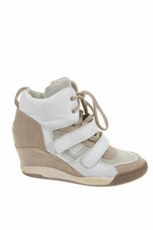 Дамски обувки Ash, Размер 40, Цвят Многоцветен, Естествена кожа, естествен велур, Цена 42,00лв.