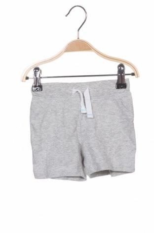 Детски къс панталон C&A, Размер 3-6m/ 62-68 см, Цвят Сив, Памук, Цена 4,73лв.