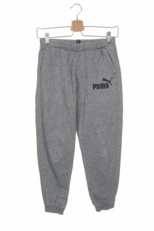 Dziecięce spodnie sportowe PUMA, Rozmiar 11-12y/ 152-158 cm, Kolor Szary, 66% bawełna, 34% poliester, Cena 74,10zł