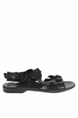 Pánske topánky Ecco