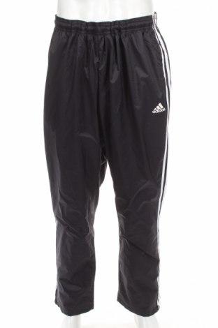 Pánske tepláky Adidas