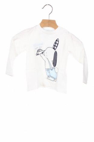 Детска блуза Chicco, Размер 9-12m/ 74-80 см, Цвят Бял, Памук, Цена 24,48лв.
