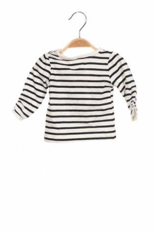 Детска блуза Crafted, Размер 2-3m/ 56-62 см, Цвят Черен, 100% памук, Цена 15,75лв.