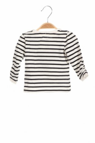 Детска блуза Crafted, Размер 3-6m/ 62-68 см, Цвят Черен, 100% памук, Цена 15,75лв.