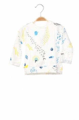 Детска блуза Lft, Размер 3-6m/ 62-68 см, Цвят Многоцветен, 100% памук, Цена 19,60лв.
