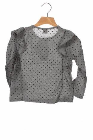 Детска блуза Little Celebs, Размер 4-5y/ 110-116 см, Цвят Сив, 100% памук, Цена 25,84лв.