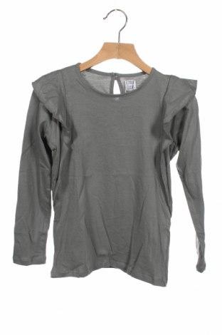 Детска блуза Little Celebs, Размер 7-8y/ 128-134 см, Цвят Сив, Памук, Цена 25,20лв.