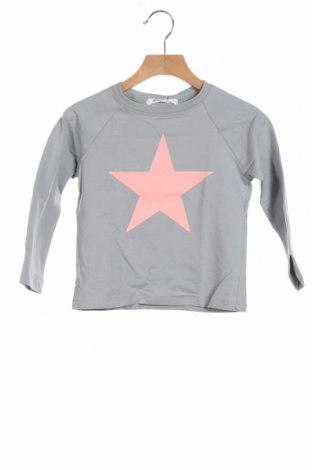 Детска блуза Little Celebs, Размер 3-4y/ 104-110 см, Цвят Сив, 96% памук, 4% еластан, Цена 24,48лв.
