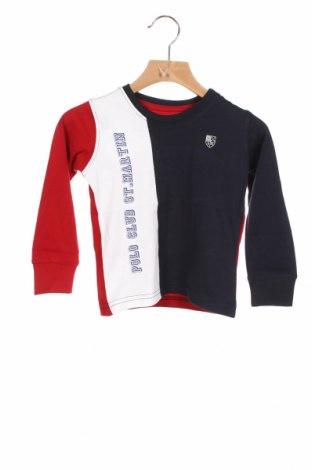 Детска блуза Polo Club St. Martin, Размер 18-24m/ 86-98 см, Цвят Многоцветен, Памук, Цена 24,00лв.