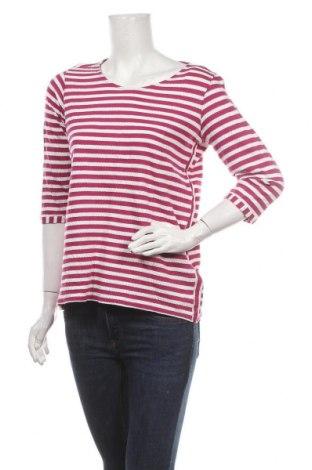 Γυναικεία μπλούζα Cecil, Μέγεθος M, Χρώμα Ρόζ , Βαμβάκι, Τιμή 11,72€
