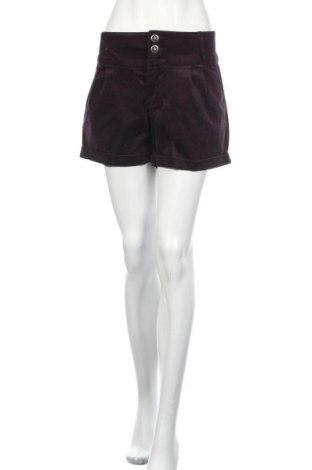 Дамски къс панталон, Размер L, Цвят Лилав, 98% памук, 2% еластан, Цена 18,90лв.