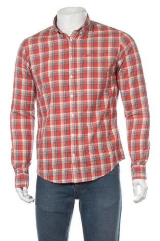 Мъжка риза SUN68, Размер M, Цвят Многоцветен, Памук, Цена 61,50лв.