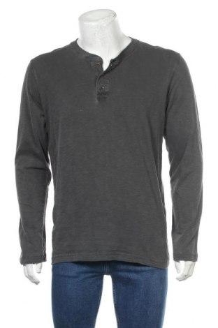 Ανδρική αθλητική μπλούζα Tom Tailor, Μέγεθος M, Χρώμα Γκρί, Βαμβάκι, Τιμή 12,62€