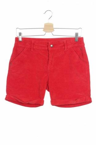 Pantaloni scurți de copii Kids By Tchibo