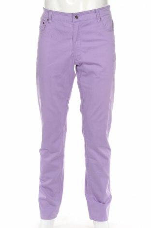 Ανδρικό παντελόνι Sws