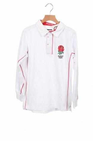 Детска блуза, Размер 10-11y/ 146-152 см, Цвят Бял, Памук, Цена 14,50лв.