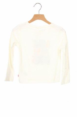 Детска блуза Billieblush, Размер 4-5y/ 110-116 см, Цвят Екрю, 65% полиестер, 35% памук, Цена 19,00лв.