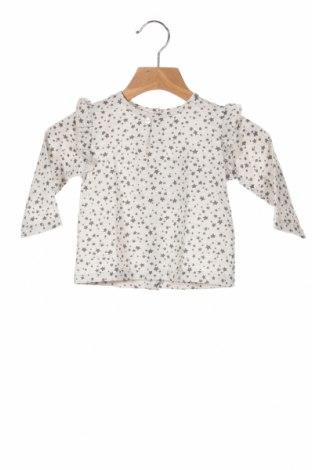 Детска блуза Little Celebs, Размер 12-18m/ 80-86 см, Цвят Сив, Памук, Цена 28,56лв.