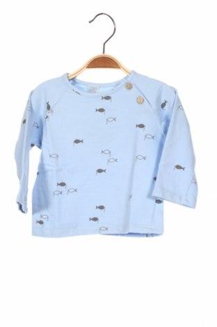 Детска блуза Little Celebs, Размер 9-12m/ 74-80 см, Цвят Син, 96% памук, 4% еластан, Цена 29,40лв.