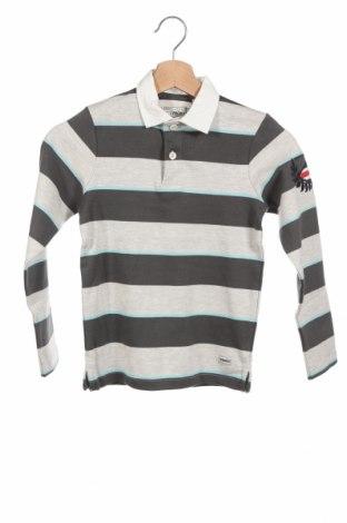 Детска блуза Produkt by Jack & Jones, Размер 6-7y/ 122-128 см, Цвят Многоцветен, Памук, Цена 26,52лв.