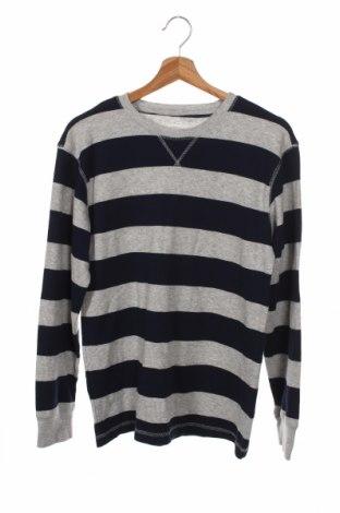 Детска блуза Roebuck & Co., Размер 14-15y/ 168-170 см, Цвят Сив, 60% памук, 40% полиестер, Цена 5,78лв.