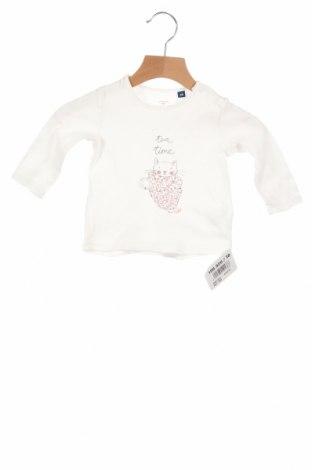 Детска блуза Tom Tailor, Размер 3-6m/ 62-68 см, Цвят Бял, Памук, Цена 17,60лв.