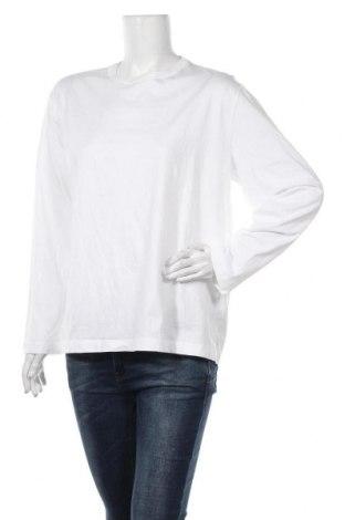 Дамска блуза Zara, Размер M, Цвят Бял, Памук, Цена 23,10лв.