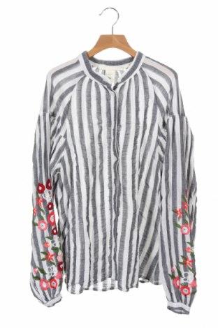 Γυναικείο πουκάμισο H&M, Μέγεθος XS, Χρώμα Γκρί, 99% βαμβάκι, 1% ελαστάνη, Τιμή 11,14€
