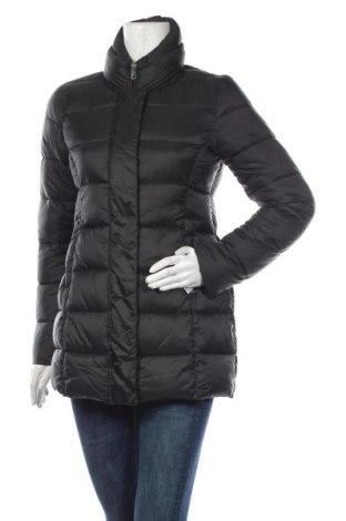 Γυναικείο μπουφάν Gas, Μέγεθος L, Χρώμα Μαύρο, Πολυεστέρας, Τιμή 100,81€