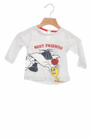 Детска блуза ZY kids, Размер 6-9m/ 68-74 см, Цвят Сив, 98% памук, 2% вискоза, Цена 39,00лв.