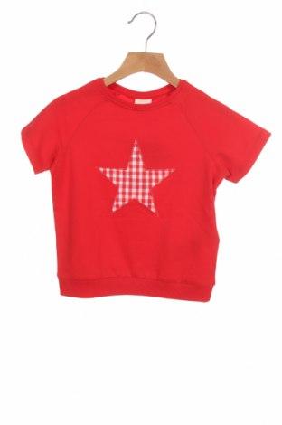 Παιδική μπλούζα ZY kids, Μέγεθος 4-5y/ 110-116 εκ., Χρώμα Κόκκινο, 60% βαμβάκι, 40% πολυεστέρας, Τιμή 9,07€