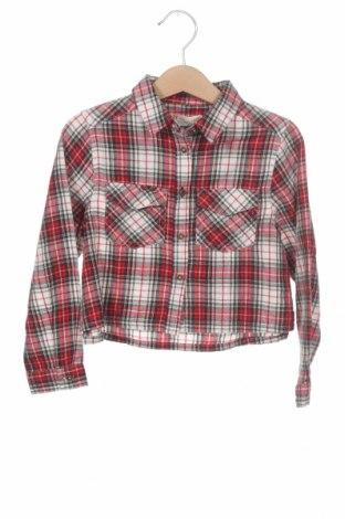 Детска риза ZY kids, Размер 3-4y/ 104-110 см, Цвят Многоцветен, Памук, Цена 26,46лв.