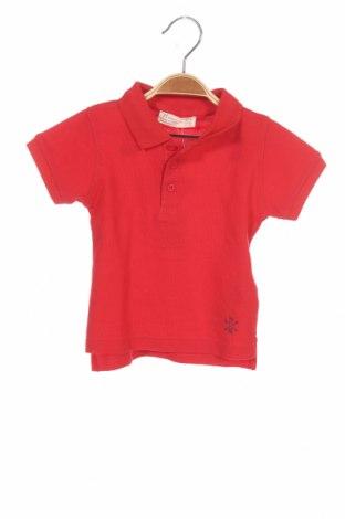 Детска тениска ZY kids, Размер 6-9m/ 68-74 см, Цвят Червен, Памук, Цена 19,50лв.