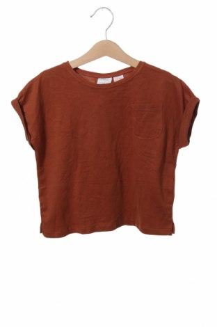 Детска тениска Zara, Размер 2-3y/ 98-104 см, Цвят Кафяв, Памук, Цена 7,84лв.